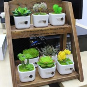 Home Living Decoration Plant Artificial Succulent Pot Gift