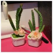 Ideal Indoor Artifical Cactus Decoration Gift Decor