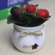 Berry Cherry Artificial Decorative for Home